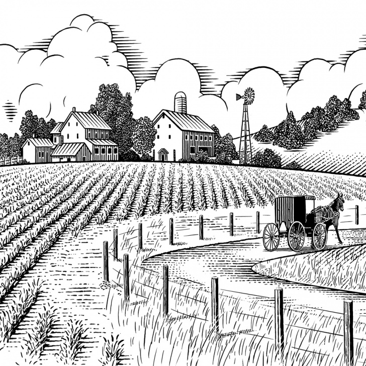 Amazing Agriculture Pencil Drawing Easy Farm Landscape Drawing At Paintingvalley   Explore Collection Of Pics