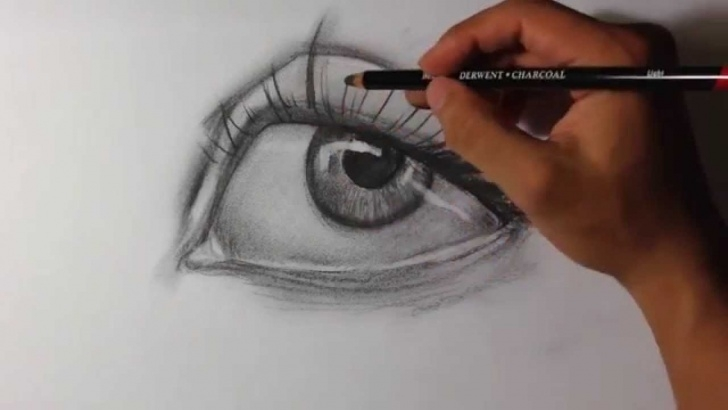 Amazing Charcoal Drawing Step By Step for Beginners Intro To Charcoal Drawing - Easy Things To Draw Photos