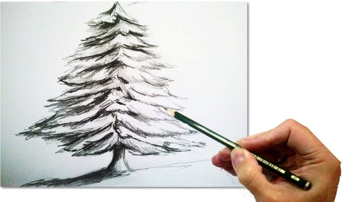 Amazing Christmas Pencil Drawings Easy Step by Step How To Draw A Realistic Christmas Tree With Pencil | #draw Step By Pics