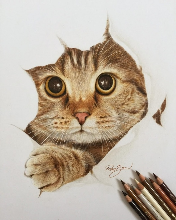 Amazing Drawing Animals In Colored Pencil Tutorials Design Stack: A Blog About Art, Design And Architecture: Realistic Images
