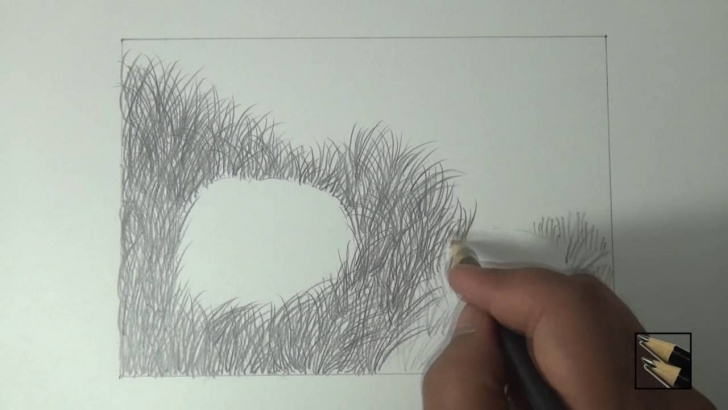 Amazing Drawing Grass With Pencil Techniques for Beginners How To Draw Grass Using Pencil For Landscape Images