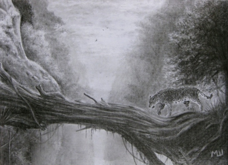 Amazing Forest Pencil Drawing Free Forest Jaguar Pencil Drawing | Miroslav Sunjkic Pencil Drawings Photo