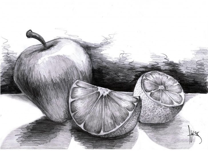 Amazing Fruits Pencil Drawing for Beginners Pencil Sketch Of Fruits At Paintingvalley | Explore Collection Pic