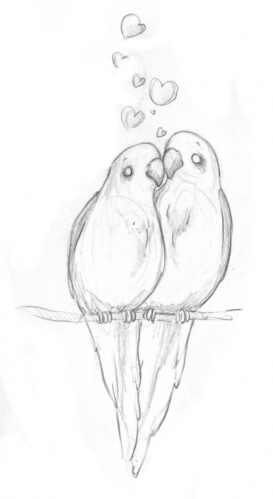 Amazing Love Birds Pencil Drawing Free Lovebird Sketch At Paintingvalley | Explore Collection Of Image