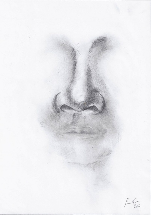 Amazing Nose Pencil Sketch Step by Step Pencil Sketches Of Human Nose Drawing Drawings Of Human Noses In Pic