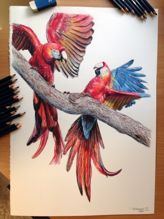 Amazing Painting With Pencil Colour for Beginners Pencil Colour Painting At Paintingvalley | Explore Collection Of Pics
