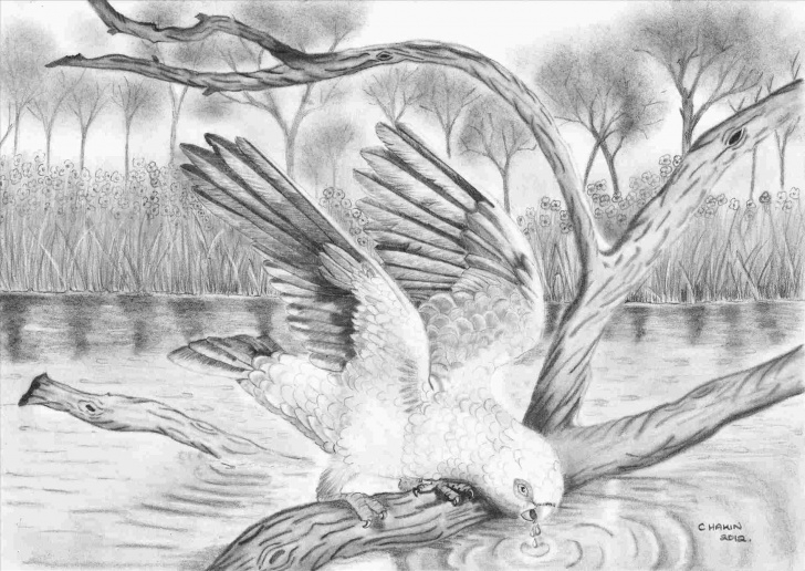 Amazing Pencil Drawing Of Nature Beauty Step by Step Beautiful Sketches Of Nature Beauty Sketches Of Nature Pencil Images