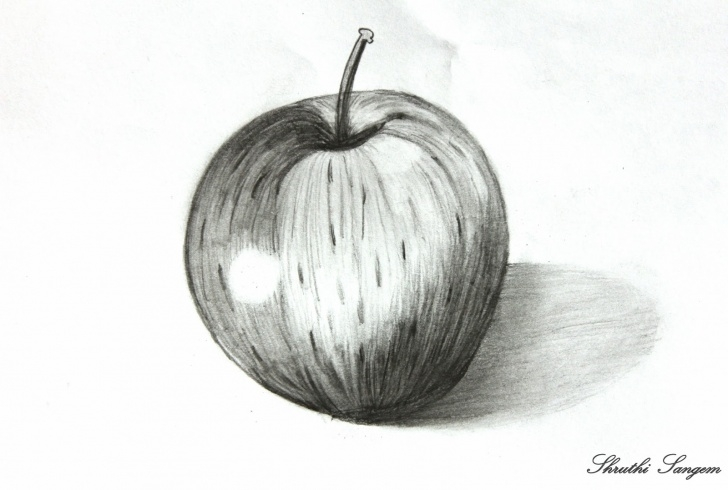 Amazing Pencil Sketch Of Apple Step by Step Art And Craft: Pencil Sketch- Apple Photos