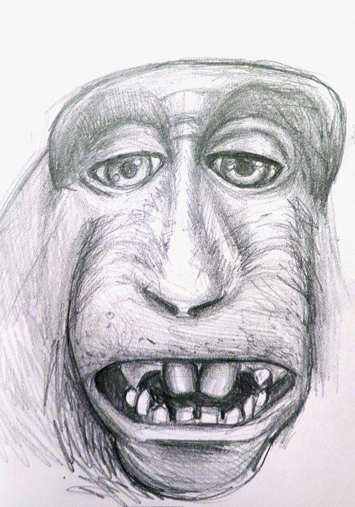 Amazing Pencil Sketch Of Monkey Techniques for Beginners Pencil Sketch Of Monkey Images