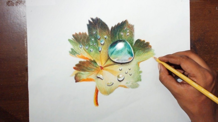 Amazing Prismacolor Drawings Step By Step Ideas Drawing Water Drops On A Leaf - Prismacolor Pencils - Youtube | Art Pics