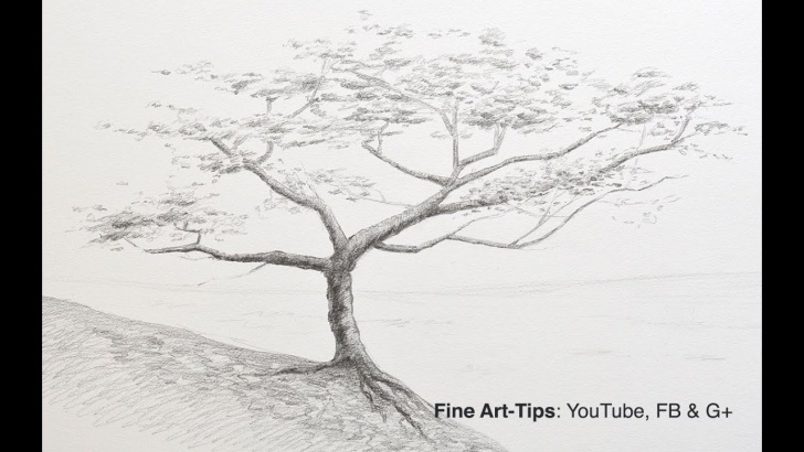 Amazing Tree Pencil Art Lessons How To Draw A Tree With Pencil Pic