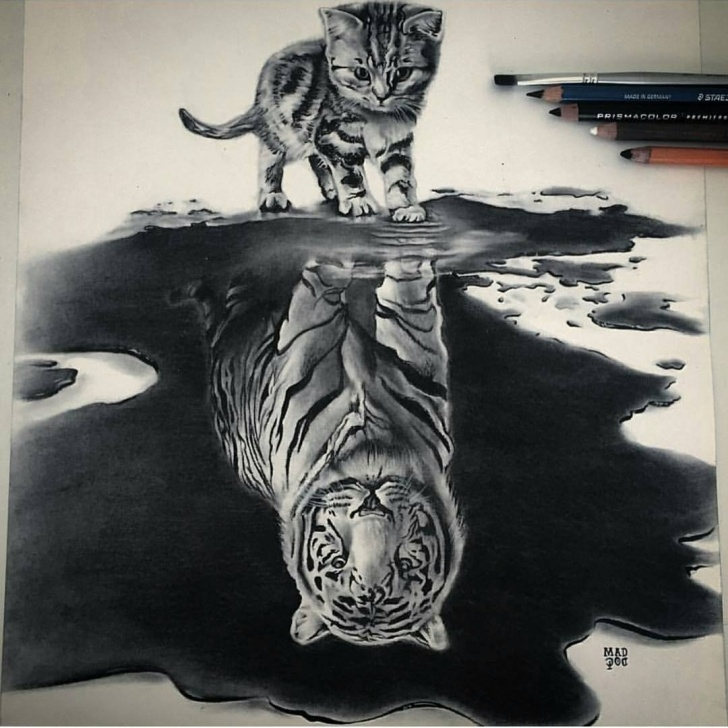 Awesome Cool Pencil Sketches Step by Step 9 Cool Pencils Drawings By Daily Artistiq - Pencils Sketches Images