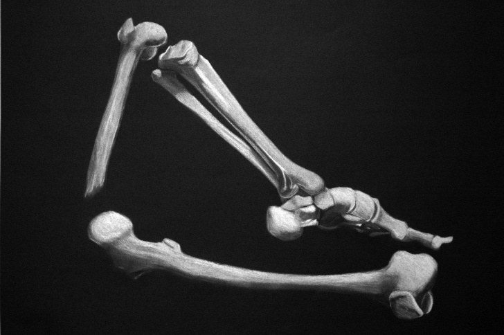 Awesome Drawing On Black Paper With White Charcoal Lessons This Week: Drawing With White Charcoal On Black Paper | Sota Image