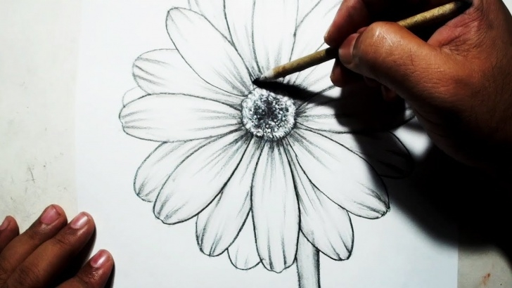 Awesome Flower Drawing With Pencil Ideas How To Draw A Flower || Easy Pencil Drawing Image