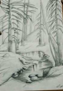 Awesome Forest Pencil Sketch Tutorial Autum Forest Pencil Sketch | Sketches In 2019 | Forest Sketch Pics