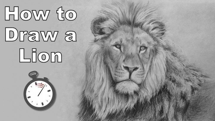 Awesome Lion Pencil Drawing Step by Step How To Draw A Lion In Pencil - Time Lapse Drawing Tutorial Image