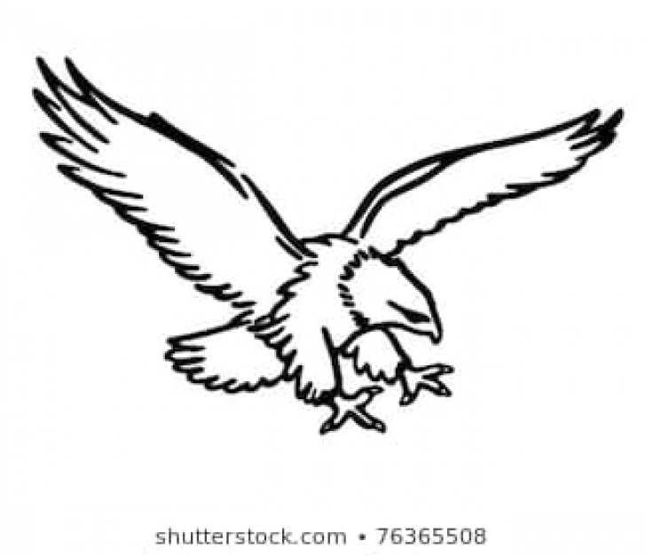 Awesome Pencil Drawings Of Eagles In Flight Step by Step Eagle Flying Drawing Images, Stock Photos & Vectors | Shutterstock Photos
