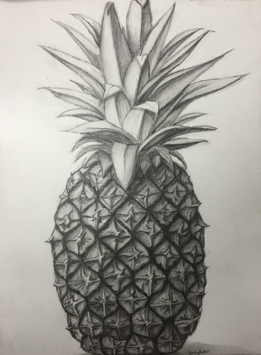 Awesome Pineapple Pencil Drawing Simple Pencil Drawing | Skill In 2019 | Pencil Drawings, Pineapple Drawing Images