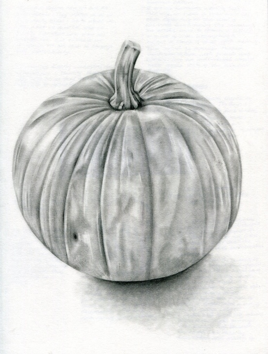Awesome Pumpkin Pencil Drawing Ideas Pumpkin | A Pencil Drawing Of A Pumpkin Using A Hb Pencil Photo