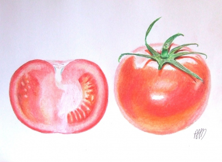 Awesome Tomato Pencil Drawing Easy Tomato Colour Pencil Drawing | My Art-Magnetic Art Ekkor: 2019 Picture