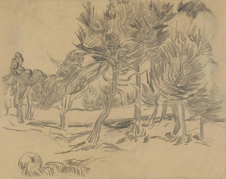 Awesome Van Gogh Pencil Drawings Courses Vincent Van Gogh (1853-1890) | Groupe De Pins | Late 19Th Century Picture