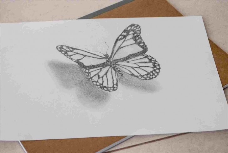 Best 3D Butterfly Drawings In Pencil Courses D 3D Butterfly Pencil Drawing Butterfly Drawing At Getdrawingscom Picture
