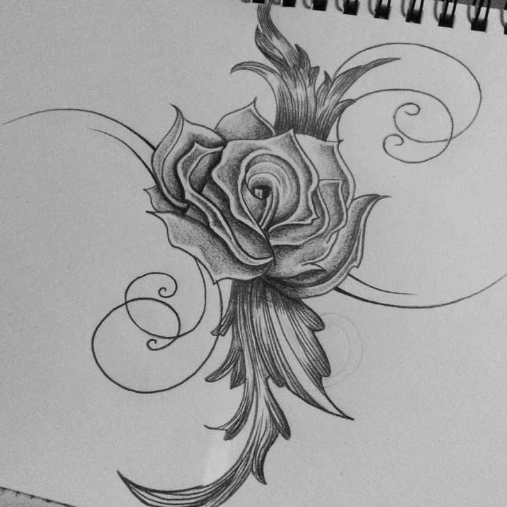 Best Beautiful Pencil Sketches Of Roses Courses Beautiful Flowers Pencil Sketch And Beautiful Rose Pencil Drawings Image