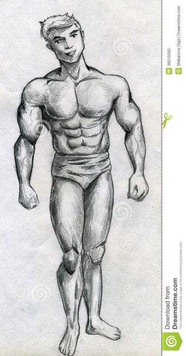 Best Bodybuilder Pencil Sketch Courses Muscular Man Stock Illustration. Illustration Of Drawing - 36015092 Photo