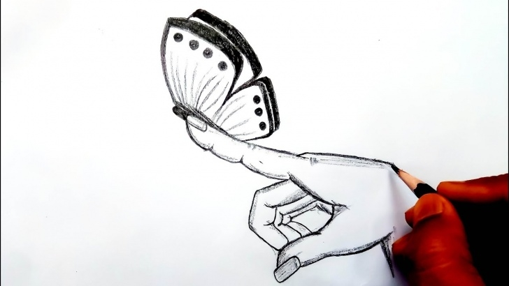 Best Butterfly Drawings In Pencil Techniques How To Draw A Butterfly - Butterfly On A Finger - Butterfly Drawings In  Pencil - (Easy Drawing) Picture