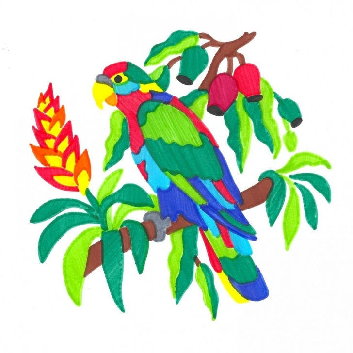 Best Color Stencil Art Free Parrot Colorfolds Stencil Book - Stencils And Coloring Books For Kids Images