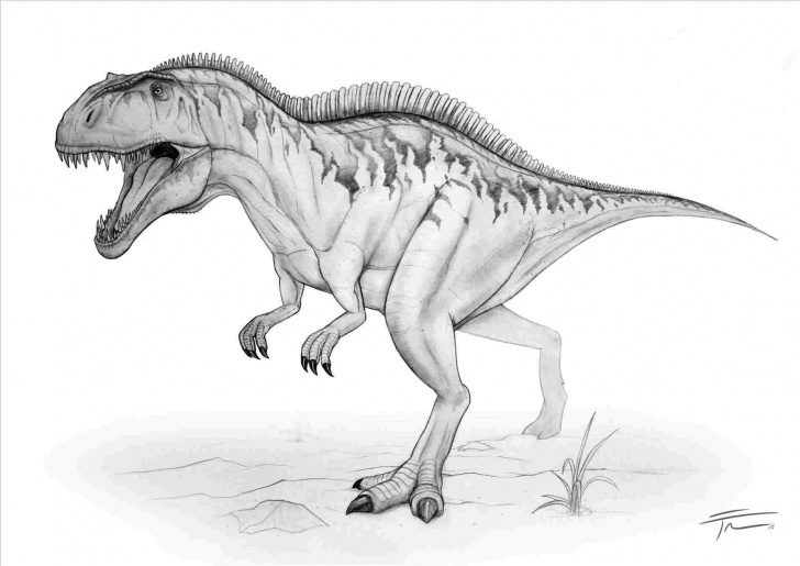 Best Dinosaur Pencil Sketch Free Dinosaur Pencil Drawing At Paintingvalley | Explore Collection Pictures