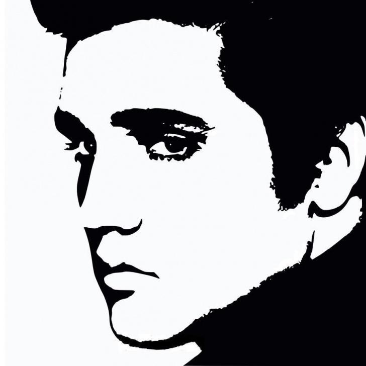 Elvis Stencil Art