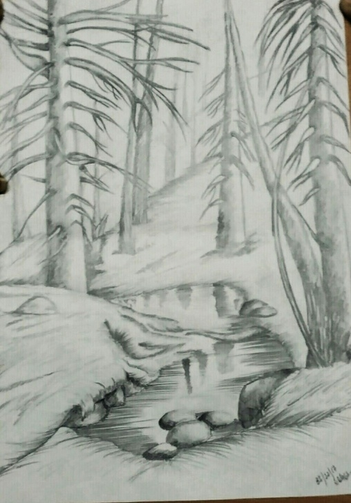 Best Forest Pencil Drawing Step by Step Autum Forest Pencil Sketch | Sketches In 2019 | Forest Sketch Pics