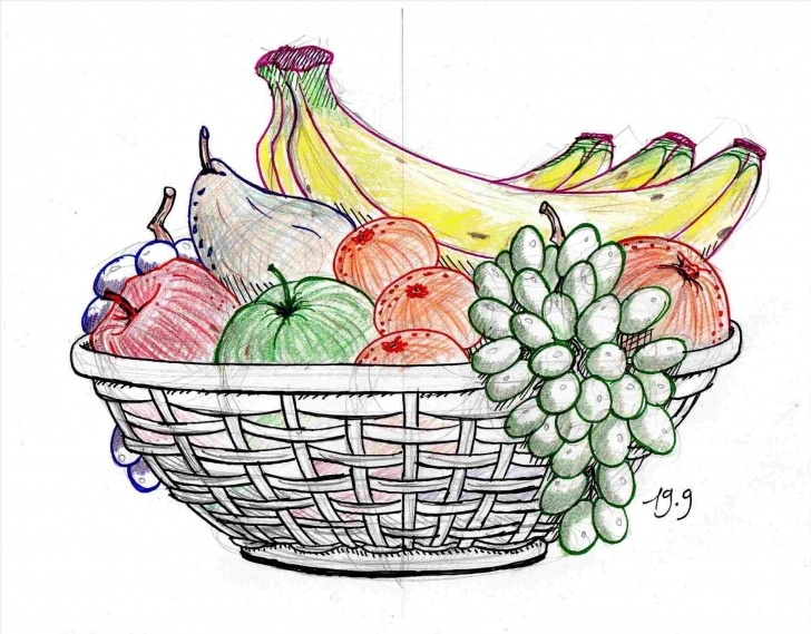Best Fruit Basket Pencil Drawing Easy Fruit Basket Drawing Shading Pictures