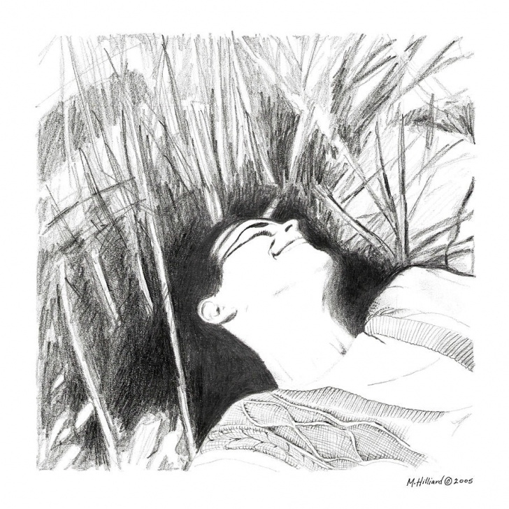 Best Grass Pencil Drawing Techniques Laying In The Grass By Marilyn Hilliard Pictures
