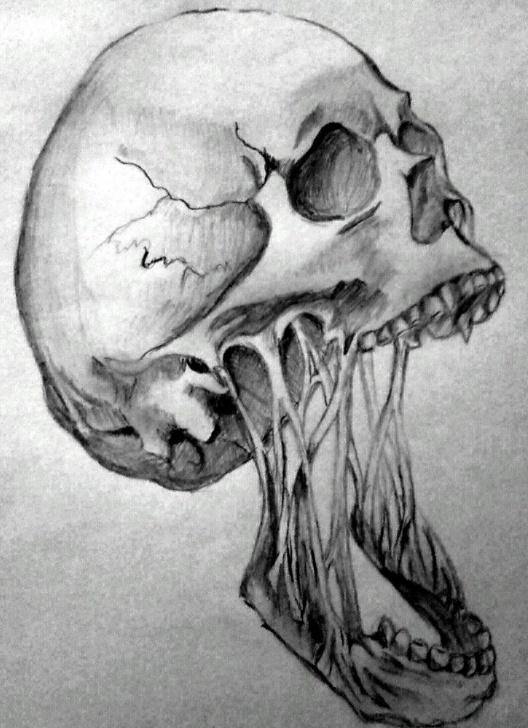 Best Horror Pencil Drawings Tutorials Horror Skull By Angeli7.deviantart On @deviantart | Horror In Photo