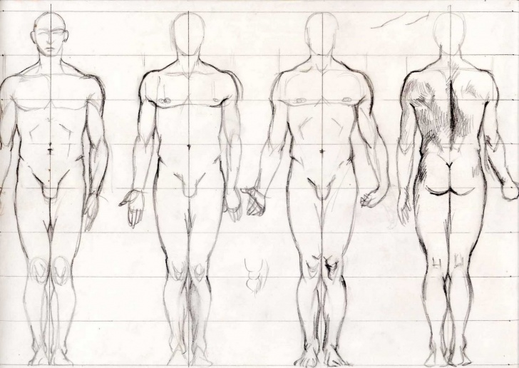 Best Human Body Pencil Sketch Free Body Drawing, Pencil, Sketch, Colorful, Realistic Art Images Images
