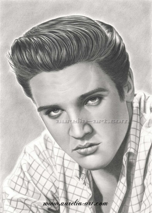 Best Pencil Drawing Of Elvis Presley Lessons The King In His Prime, He Couldn't Be Touchedreally Was A Hunka Image