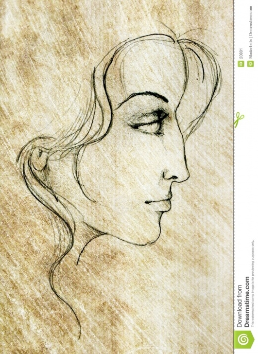 Best Pencil Sketch Of A Woman Simple Face Of Woman Sketch Drawing Stock Illustration - Illustration Of Images