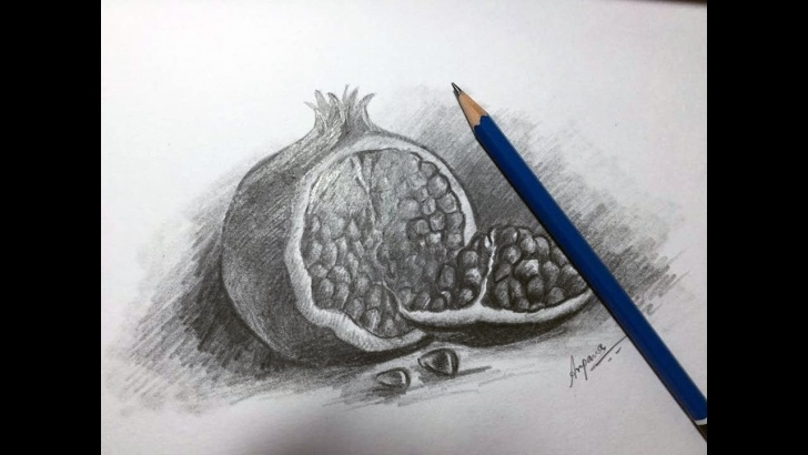 "Best Pomegranate Pencil Drawing Courses Fruit Sketch : ""how To Draw Pomegranate"" Graphite And Charcoal Photos"