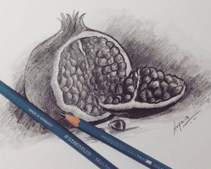 "Best Pomegranate Pencil Drawing Courses Fruit Sketch : ""how To Draw Pomegranate"" Graphite And Charcoal Pics"