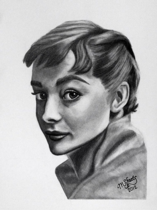 Best Realistic Graphite Portraits for Beginners Realistic Graphite Pencil Portraits By Msheets Photo