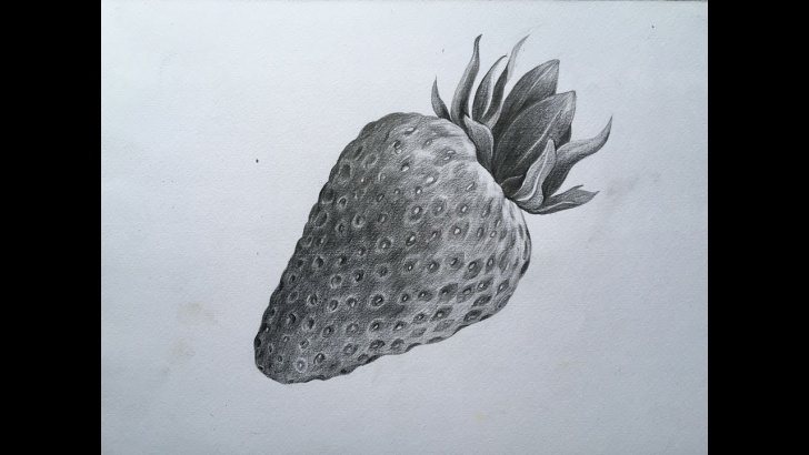 Best Strawberry Pencil Drawing Free Strawberry Pencil Drawing At Paintingvalley | Explore Collection Picture