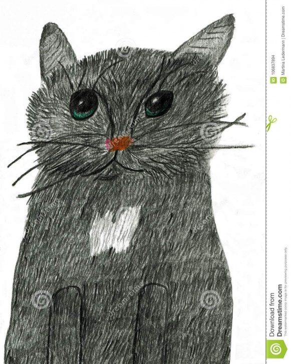Excellent Black Cat Pencil Drawing Techniques Lovely Black Cat With Impressionable Eyes Stock Vector Pic