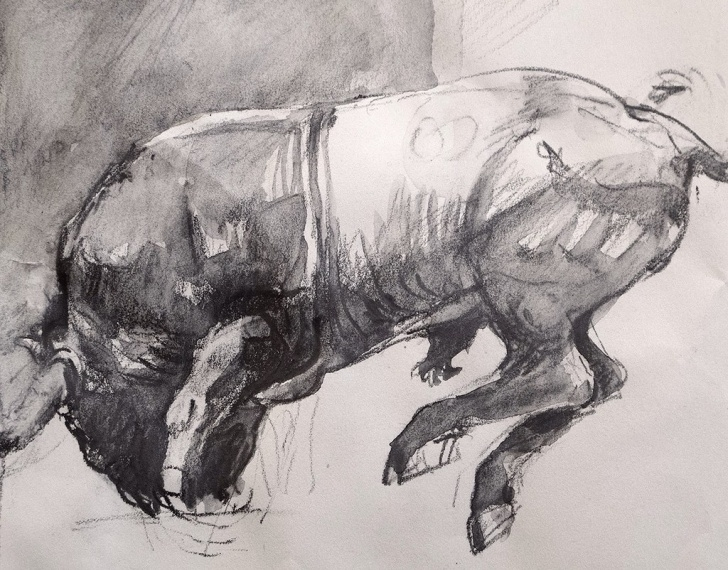 "Excellent Bull Pencil Drawing Courses Imag""bull"" Pencil Sketch For A Large Dyptih Watercoloure 