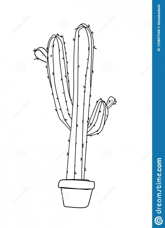 Excellent Cactus Pencil Drawing Simple Cactus In A Pot , Pencil Drawing Stock Vector - Illustration Of Photo
