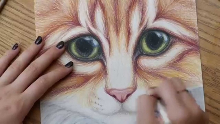 Excellent Colored Pencil Drawings for Beginners Kitty Cat With Big Eyes Colored Pencil Drawing - Full Version Image