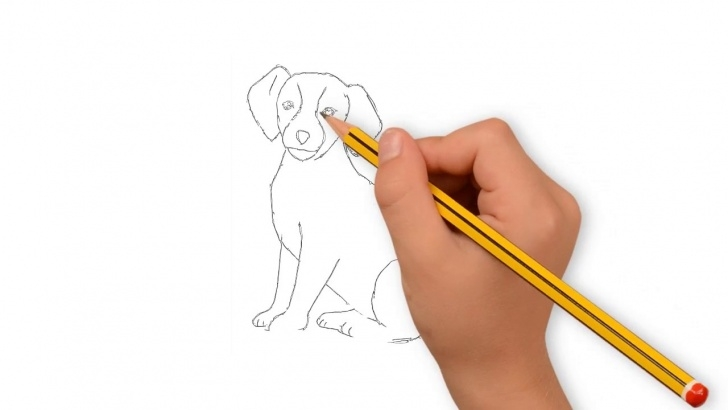 Excellent Dog Pencil Drawing Easy Techniques Dog Drawing With Pencil | Dog Drawing Easy | How To Draw Dog For Kids Easy Photo