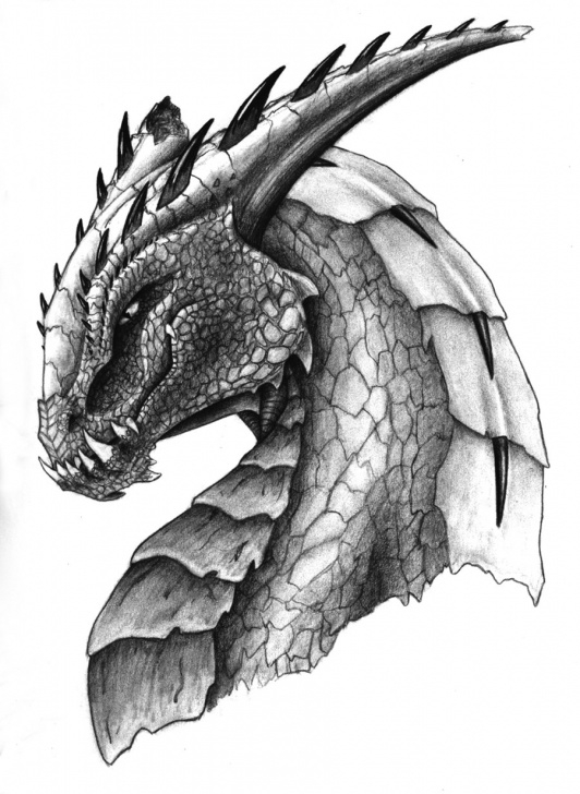 Excellent Dragon Drawings In Pencil Easy Techniques Free Dragon Drawings, Download Free Clip Art, Free Clip Art On Pic