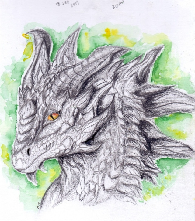 Excellent Dragon Pencil Art Free Dragon Pencil Drawing - Christabelle - Art And Things Picture